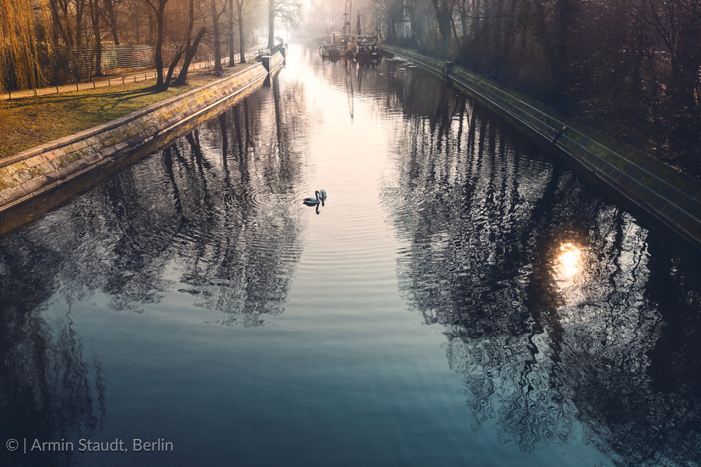Canal in Berlin Kreuzberg, morning impression with to swans